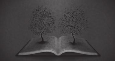 Felsefenin Bir Kimliği Var mı